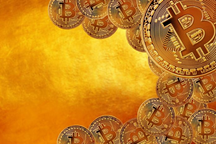 Artists Commemorate Cultural Effect of Bitcoin with Digital Currency-Inspired Exhibit