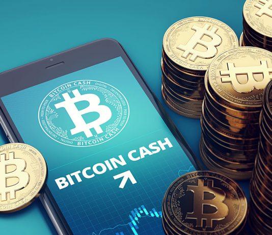 Will Bitcoin Money (BCH) Cost Rise as Hark Fork Approaches?