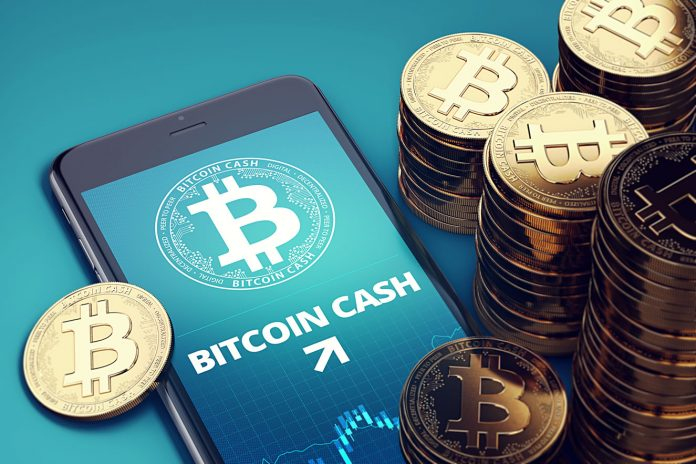 Will Bitcoin Money (BCH) Cost Rise as Hark Fork Approaches?