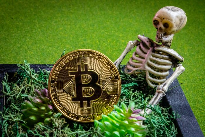 No, In Charge of Bitcoin Isn't Dead, however You Can't Call Him Either