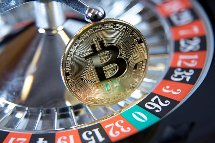 Investor Loses Bitcoin Bet, However Doubles Down on Crypto