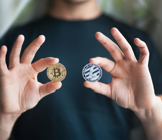 Litecoin Enormously Exceeded Bitcoin Considering That November Sell-Off By 4x