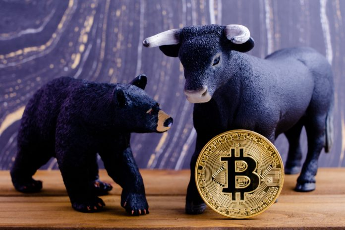 Find the Distinction: Bitcoin Bulls Versus Bitcoin Bears