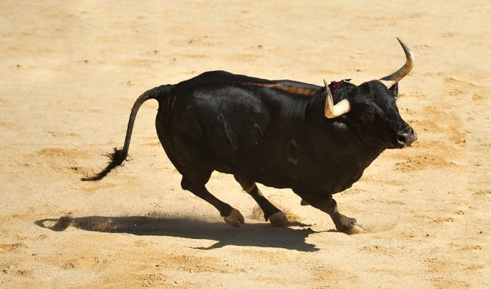 Bitcoin Crosses Above $4,000: Genuine Rally or Bull Trap?
