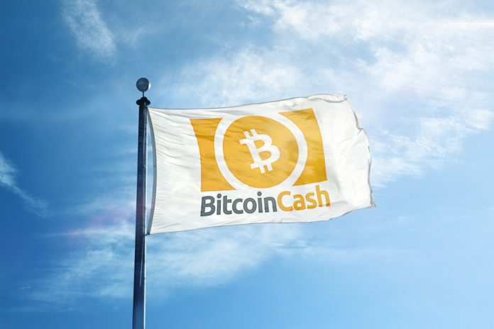 Crypto Bulls Return? Bitcoin Money (BCH) Doubles in Rate in Simply 48 Hours