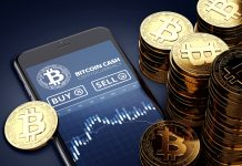 Bitcoin SV Continues to Plunge Amidst Delisting Pattern: Bitcoin Money Hodlers Commemorate