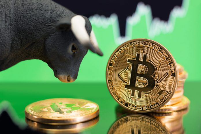 Bitcoin (BTC) Up 8.2 Percents as More Americans Hold