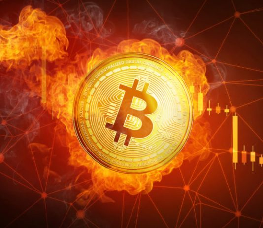 """NTV Divergence Reaches Booming Market """"Mania"""" Levels, Bitcoin Rate Boost Not Organic"""