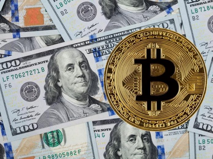 Bitcoin cost expert anticipates cryptocurrency will reach record high in 6 months in spite of current crash