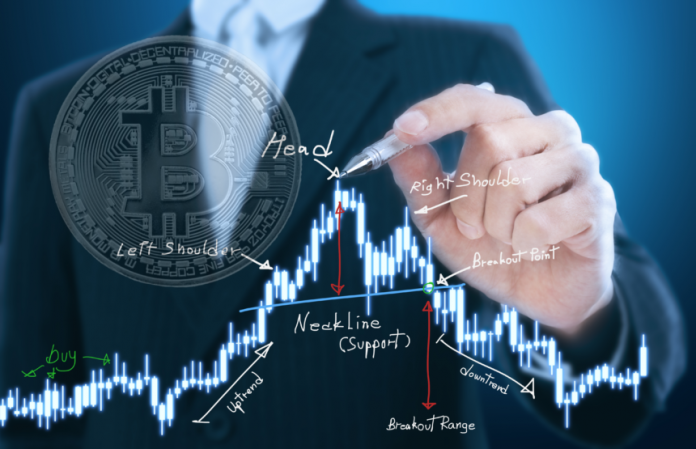 Contrarian Bitcoin Upsets Bearish Investors, However Enormous Head and Shoulders Still in Play