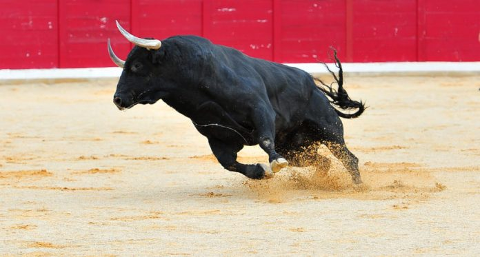 Cardano (ADA) Leads Crypto Market With Staggering 24% Gain in 4 Days