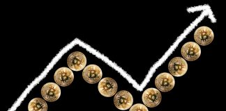 Bitcoin Units 24-Hour Buying and selling Quantity All-Time Excessive, Practically Double Final Crypto Bull Run