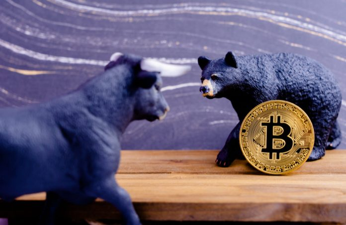 Bitcoin Drop Might Continue Through 2019 as Bears Holler; Here's Why
