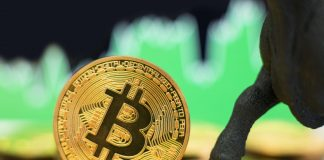 Bitcoin is Becoming Shop of Worth amongst United States Investors: Former Uber Officer