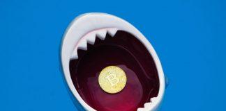 'Pity on You,' Shark Tank Judge Informs Bitcoin Bull Pompliano