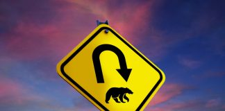Ripple Rate (XRP) Bearish Circumstance Active: BTC & & ETH Nosedives
