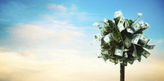 Crypto Business Owner Pledges Match of Presidential Prospect's Universal Basic Earnings Plan