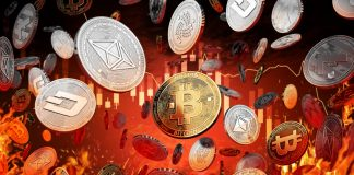 Crypto Expert: Altcoin Armageddon Triggered Bitcoin Bearishness