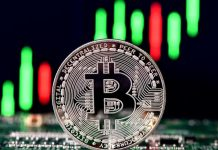 Bitcoin''s record rate rise of 2017 was brought on by a bachelor, research study claims