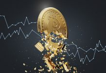 Expert: Break Listed below Bitcoin's Existing Assistance Might Trigger Drop to $6,000