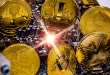 Litecoin Lights Course To Crypto Market Bottom, Halving Absolutely Nothing however Buzz