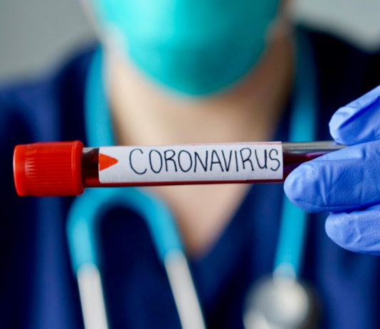 Coronavirus Worry Shocks Markets, However Crypto Stays Untouched
