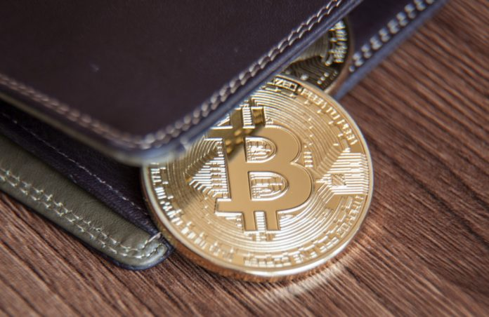 """Variety of Bitcoin """"Wholecoiners"""" is Proliferating; Here's What This Indicates"""