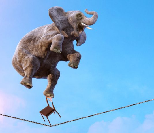 Cryptocurrency Stablecoins Thrive Throughout Market Recession and Panic Selloff