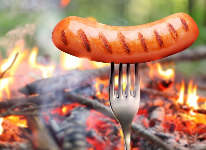 Pizza & & Hotdog: How Uniswap's Earnings Buffet Can Burn Crypto Financiers