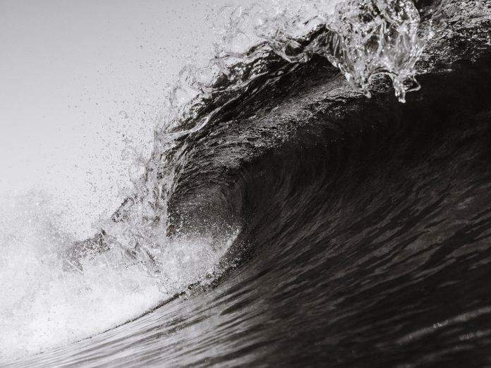 """Tyler Winklevoss: A """"Tsunami"""" of Capital Is Coming For Bitcoin"""