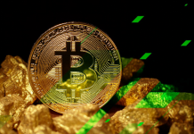 2021 Is Bitcoin's Year: How to Participate the Digital Gold Rush