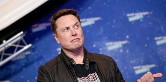 No, Elon Musk, there is absolutely nothing 'cool' about exploring on animals