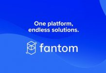 Fantom Offers Grants to Assistance Blockchain Developers Structure on Opera