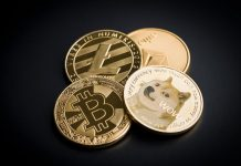 Why Andre Cronje Thinks DOGE Benefits Crypto