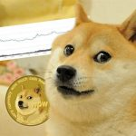 Dogecoin: How did a renowned meme end up being the world's wealthiest male's preferred cryptocurrency? (cloned)