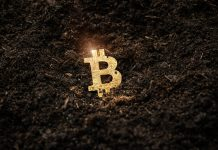Bitcoin mining is disastrous for the setting – it's time for governments to intervene