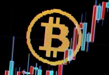 Bitcoin rate news– live: 'Dead feline bounce' pattern divides crypto market expert
