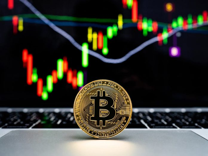 Bitcoin rate – live: Crypto market gets better ahead of Elon Musk's 'B Word' look