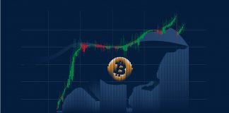 How The 55% Bitcoin Correction Restores Contrasts To Previous Bull Cycle
