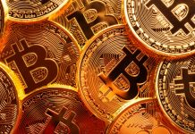 Bitcoin rate news– live: Crypto market divides as BTC falls however other coins increase