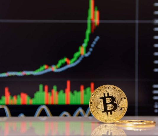 """ARK Invest CEO: Bitcoin In """"Capitulation Stage,"""" Still Set For $500 k"""