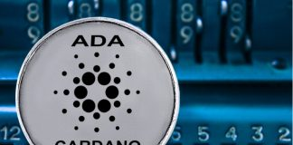 IOG Rejects Reports About Cardano Smart Contracts Platform