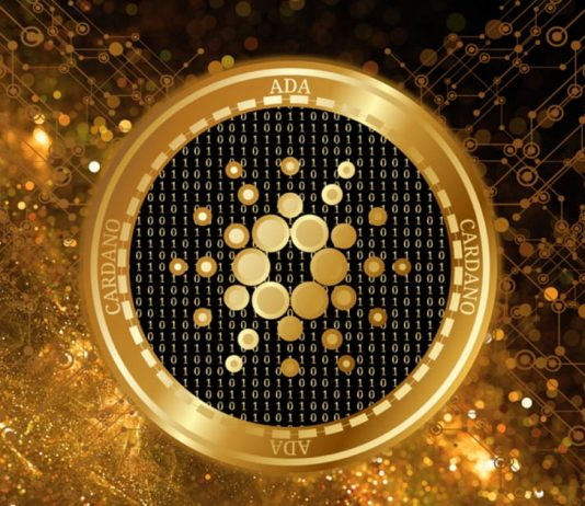 Cardano Effectively Releases Alonzo HFC, However Why Is Cost Down?