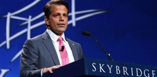 Skybridge Capital Applies For Cryptocurrency ETF And Collects $100 Million For ALGO Fund