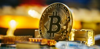 Will Worry And Greed Keep Bitcoin Purchasers From The Halloween Impact?