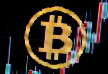 Bitcoin news– live: BTC cost stabilises after rise following Twitter crypto tipping statement