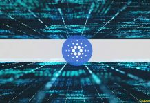 Grayscale Report Reveals The Great, The Bad, And The Unsightly Of The Cardano Network